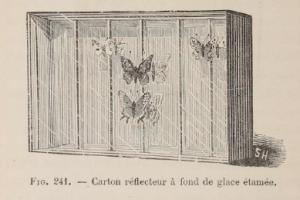 3-boite-avec-reflecteur.-source_-h.-coupin-1895-l-amateur-de-papillons-2